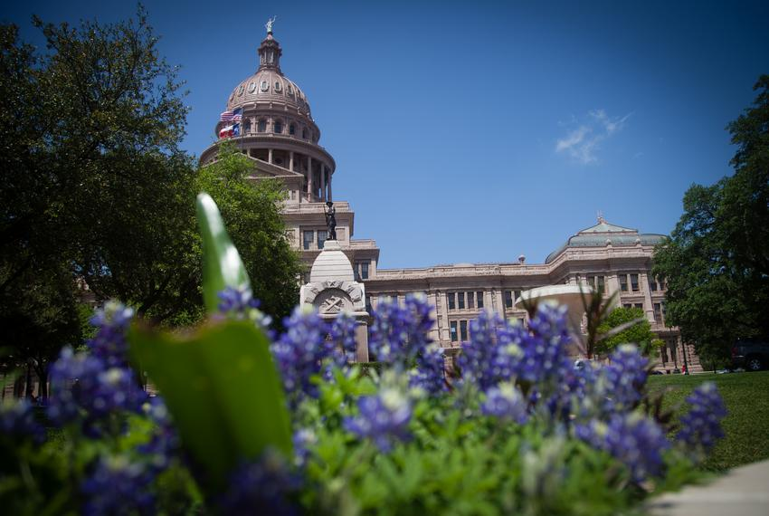 The exterior of the Texas Capitol is shown in April 2014.