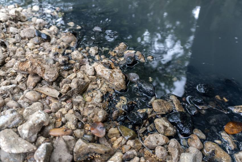 Black residue on the banks of Skull Creek near Columbus on April 14, 2019.