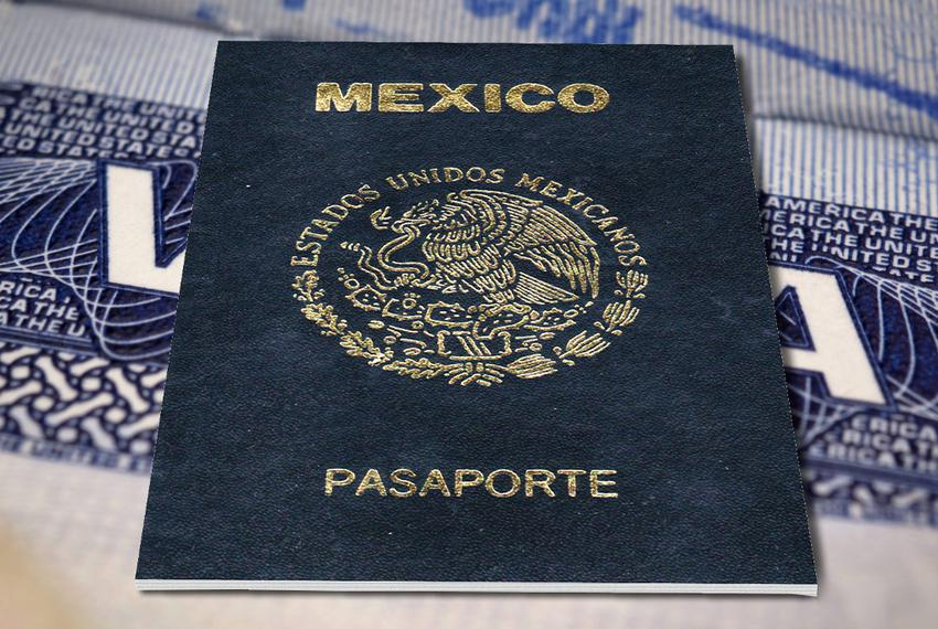 A number of Mexican nationals are in the United States on treaty investor visas, which allow them to operate businesses here…