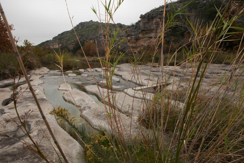 Three biological regions converge on the Dolan Falls Preserve: the Edwards Plateau, Chihuahuan Desert and Rio Grande Plain b…
