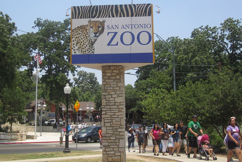 Texas Zoos Struggle to Limit Guns Under New Laws | The Texas