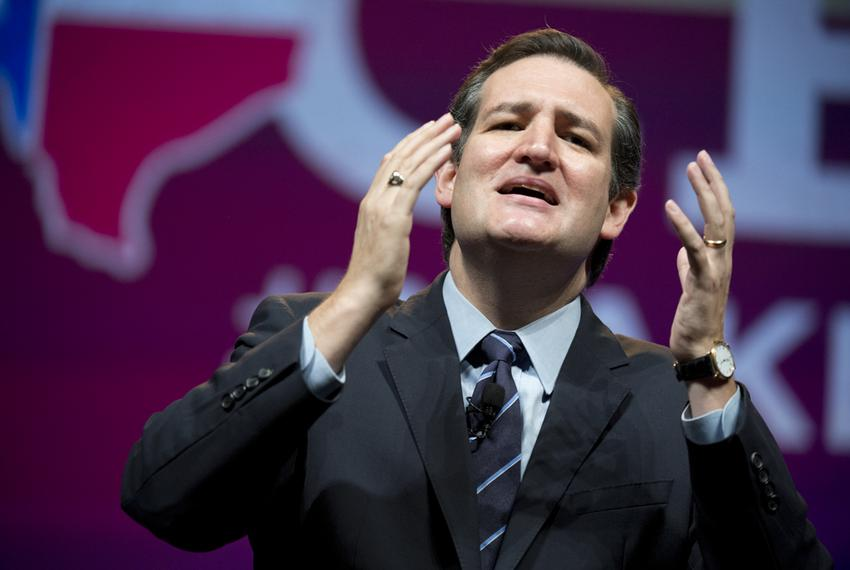 Sen. Ted Cruz of Texas gives an impassioned speech to Republican delegates in Fort Worth on June 6, 2014.