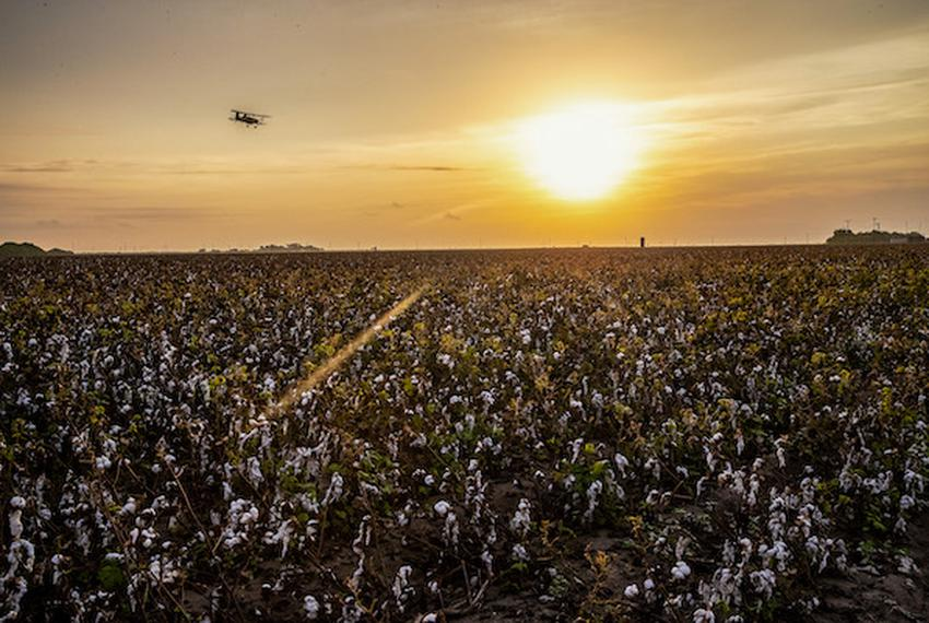 A plane sprays cotton fields for bugs near the United States border wall East of Santa Ana Wildlife Refuge and Highway 281 i…