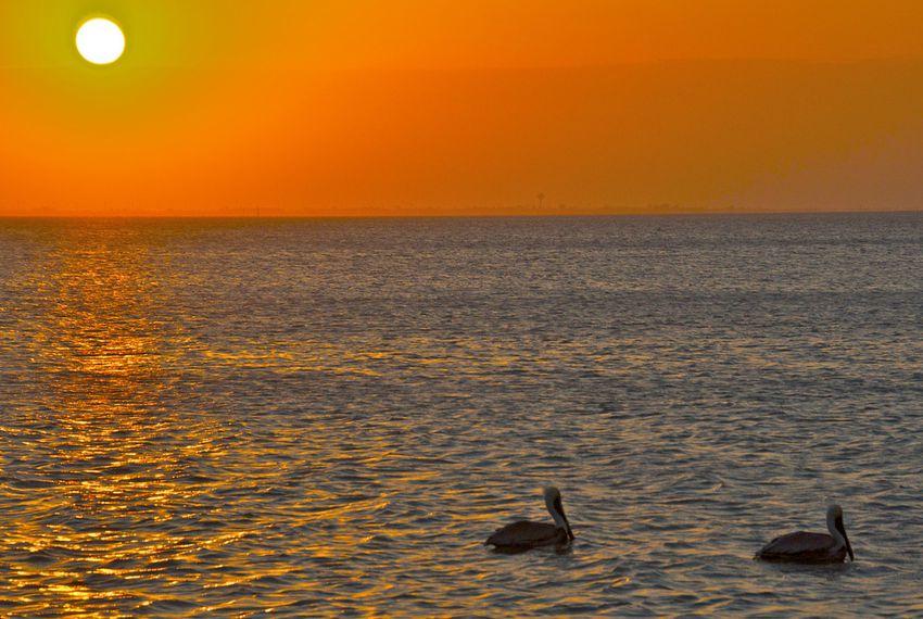 South Padre Island,  January 28, 2012