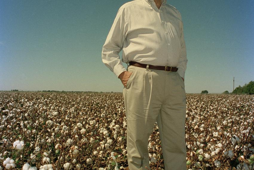 Portrait of Pete Laney in a West Texas cotton field, 1998.
