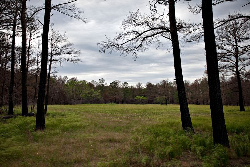 """""""If a park has to close, it's the equivalent of a manufacturing plant. It's economically devastating,"""" says Texas Coalition for State Parks spokesperson Jennifer Sarver."""