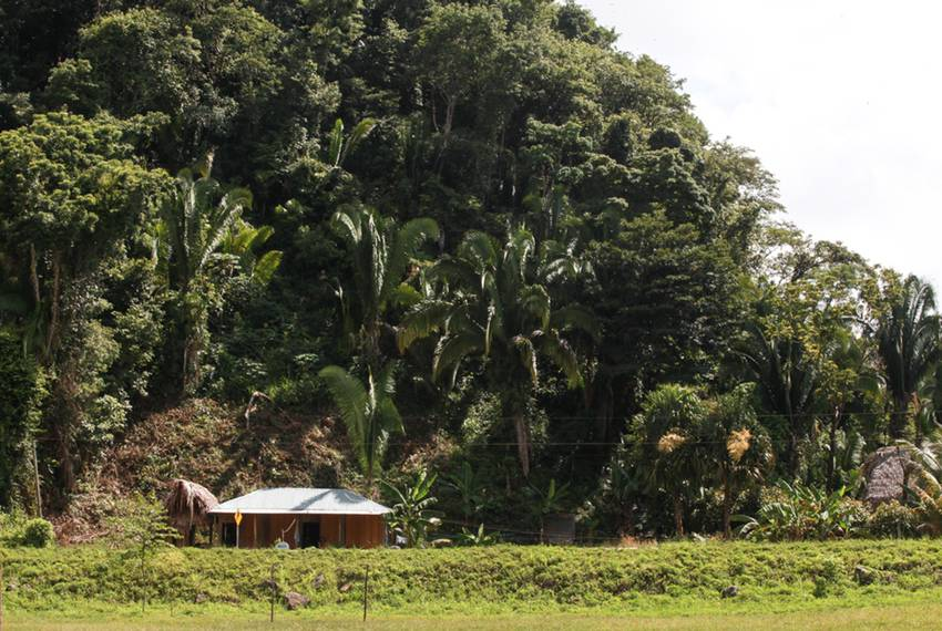 The Xol and Bol home in San Miguel Limón, in the Guatemalan state of Alta Verapaz, where David Xol works on a plantation c...