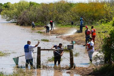 Contractors hired by Formosa clean up plastic pellets and powder along the bank of Cox Creek. Wilson has said this has been largely uneffective and a waste of resources. Point Comfort, Texas. MArch 20, 2019.