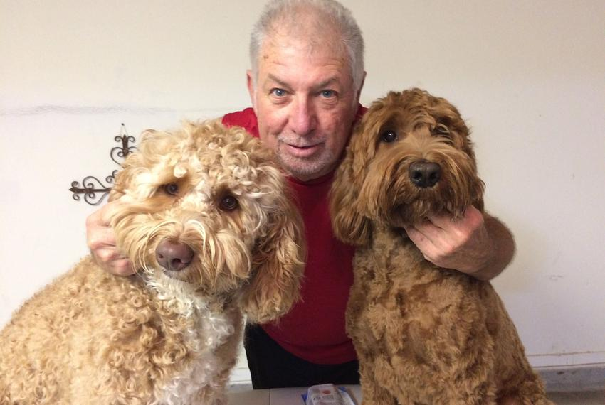 Major (vanilla, left), Bo Henry (chocolate, right) and Kent (human, center) after Donna Boatright got after them with the ...