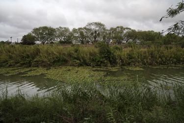 The Rio Grande as seen from a migrant camp in Matamoros, Mexico, on Friday.