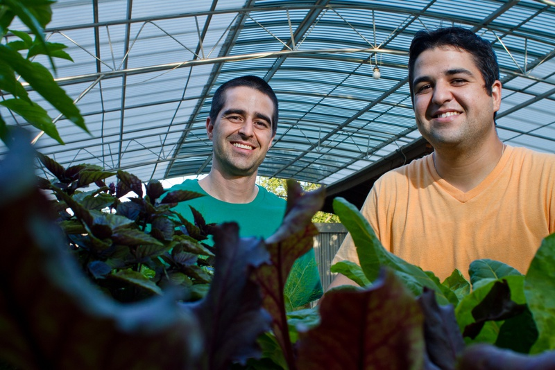 Brothers Christian and Joseph Lane are looking to promote healthy eating in Austin. Their other brother Patrick is missing from the photo, but also involved in founding the in.gredients grocery store.