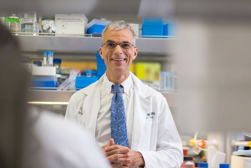 Dr. Tyler Curiel, M.D., M.P.H.,professor, Daisy M. Skinner President's Chair in Cancer Immunology, Division of Hematology/Oncology, Department of Medicine; professor, Department of Microbiology, Immunology and Molecular Genetics, Joe R. & Teresa Lozano Long School of Medicine.