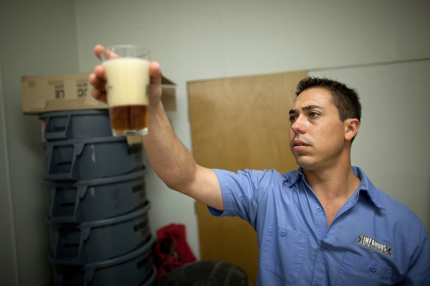 Matt Bitsche, chief engineer and head brewer at Infamous Brewing Company, inspects a pint of beer for clarity, aroma and overall carbonation in the glass, Jul. 12, 2013.
