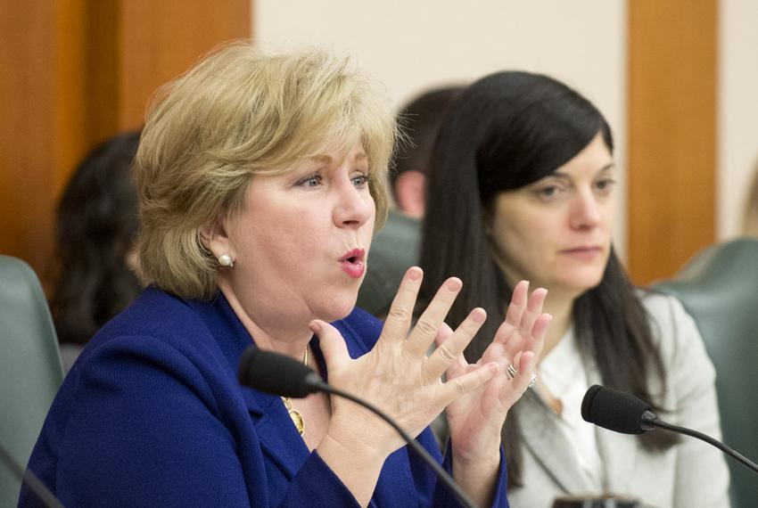 State Sen. Jane Nelson, R-Flower Mound, at a public hearing at the Texas Capitol on Feb. 20, 2014.